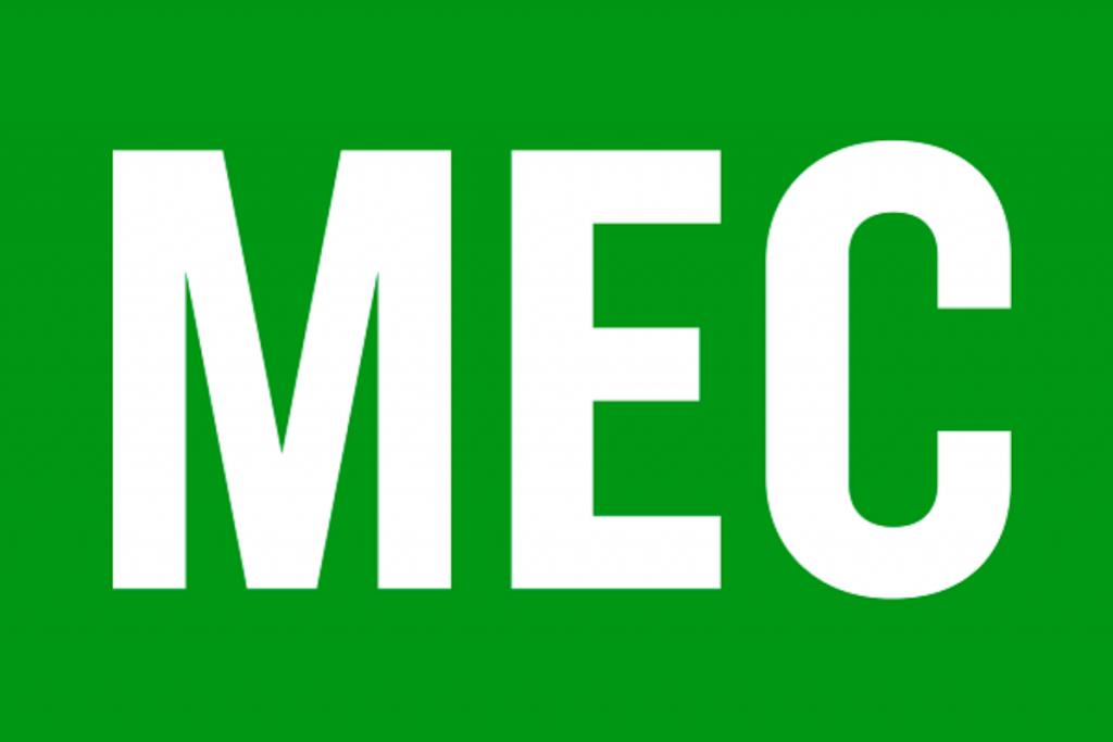 Confira quais são os cursos EAD reconhecidos pelo MEC (Foto: internet)